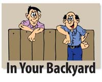 InYour Backyard